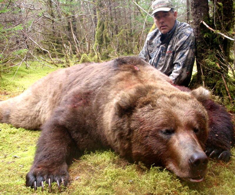 Biggest Brown Bear Coastal brown bear hunt